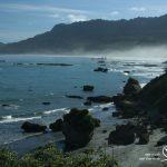 ניו זילנד | חבלי ארץ