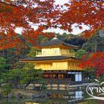 שלכת ביפן | חבלי ארץ
