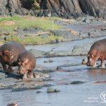 טנזניה | חבלי ארץ