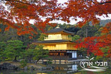 """秋 קוֹיוֹ (Kōyō) """"עלים אדומים"""" ביפן"""